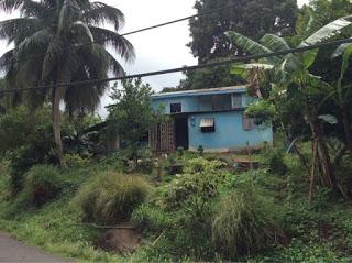 Grenada: Cinnamon Rolls